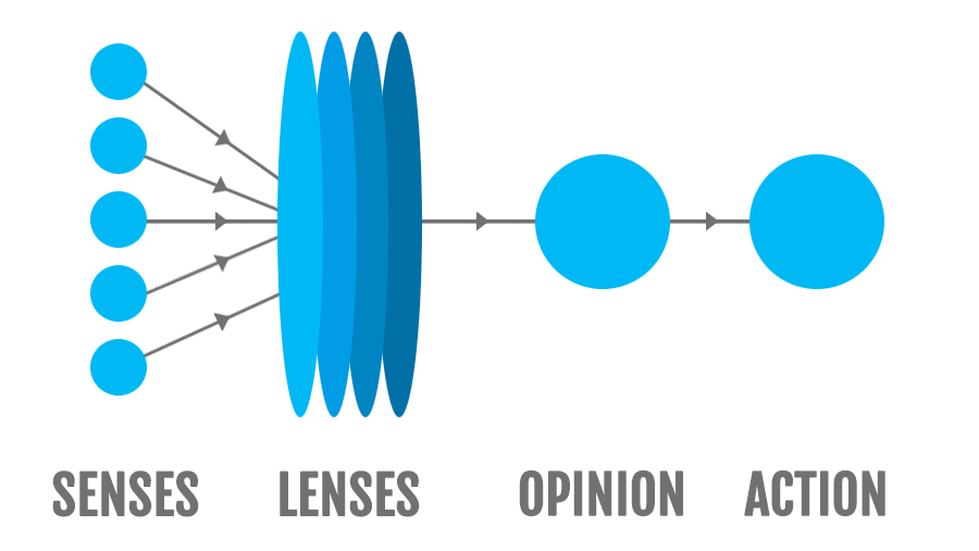 Perception Flow